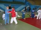 Международный турнир по  дзюдо «Европа»  26мая2011г