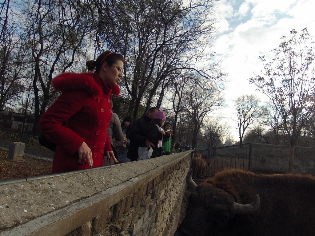 Галерея - Категория  Зоопарк после соревнований - Файл  Зоопарк ... a12c623bd6c